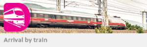 train_text